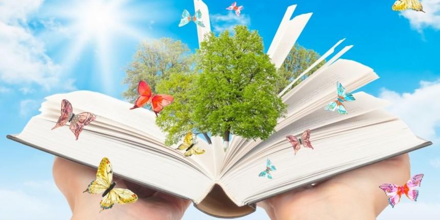 Petit Soleil Olarak Eğitim Anlayışımız